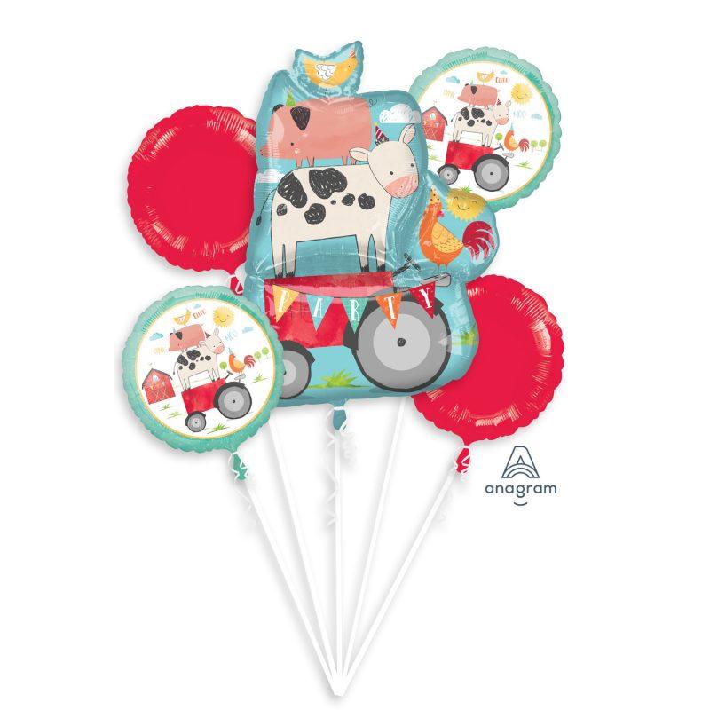 domace zivotinje buket helijumskih balona