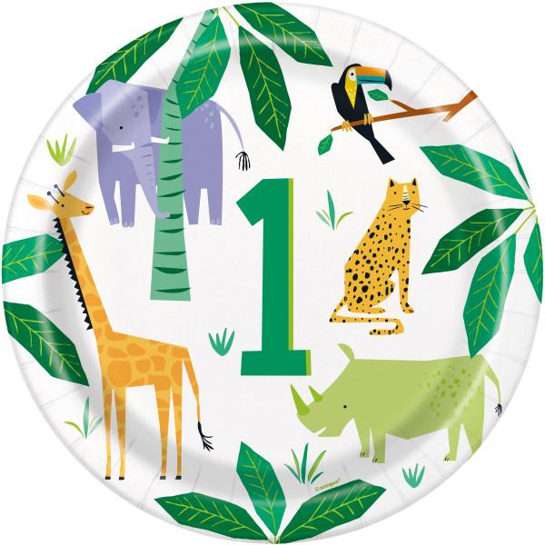 safari tanjirici za prvi rodjendan