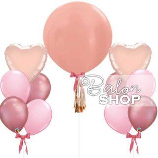 "Set balona ""Sve nijanse roze"""